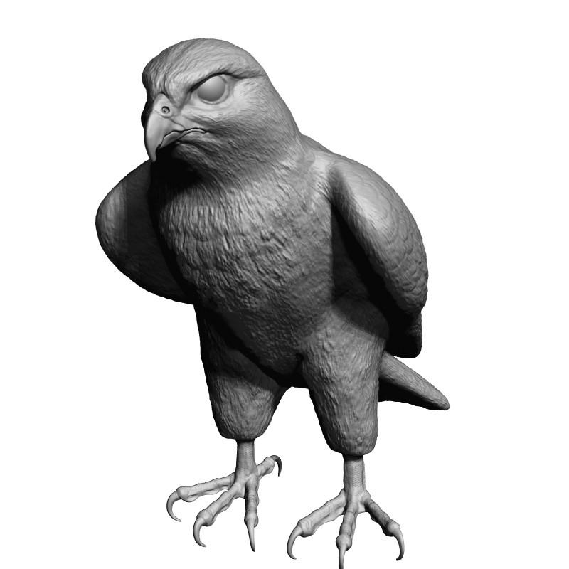 3d model falcon bird
