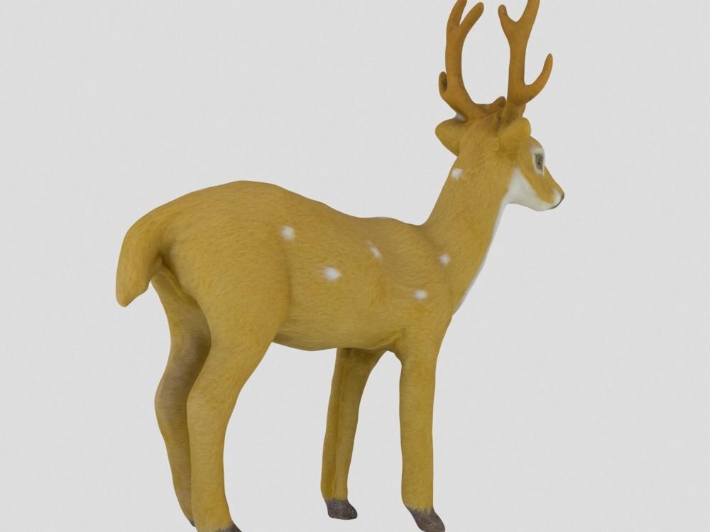 Carlos faustino deer 6