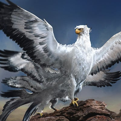 Sam rowan boswell thunderbird v001 011 sr