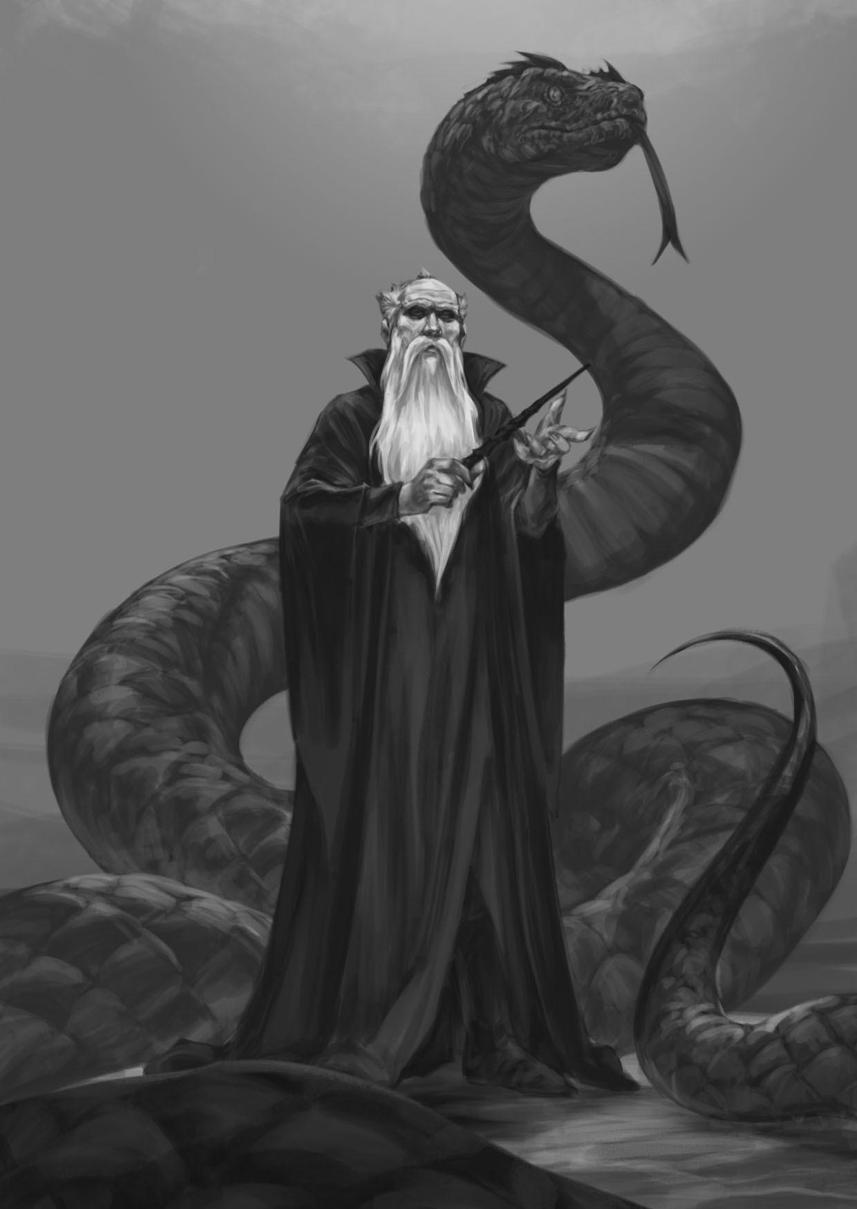 Fadly Romdhani Salazar Slytherin