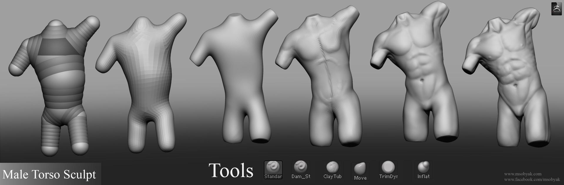 Artstation Male Torso Anatomy Sculpt Michael Sobyak