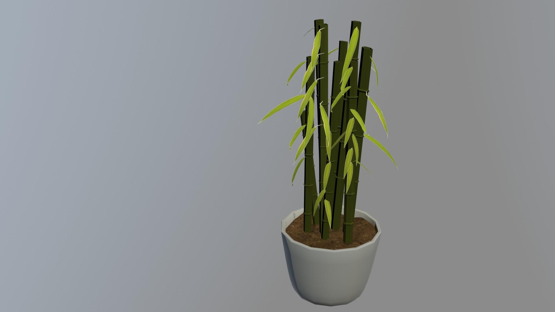 Matej chalachan bamboo mat