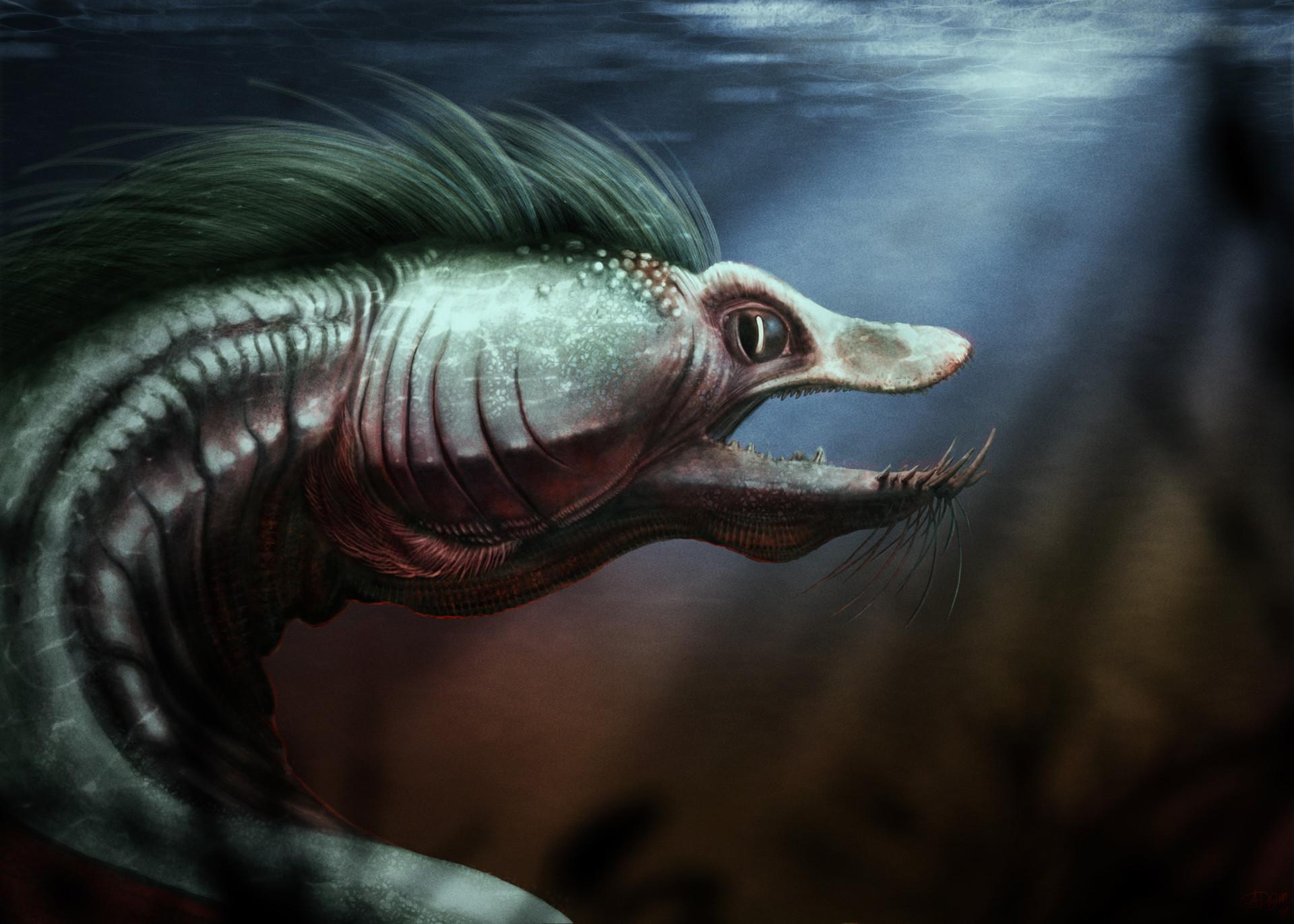 Adam milicevic eel adjusted 2