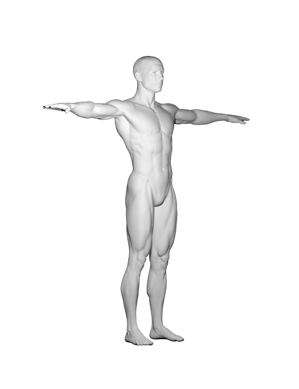 William Soares - Male Anatomy references for Artists PDF is