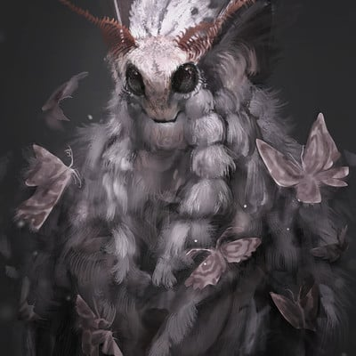 Sandra duchiewicz poodle moth