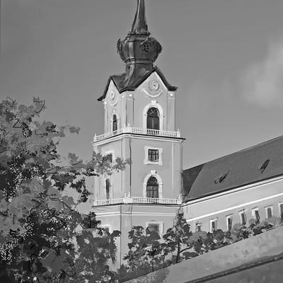 Piotr kolodziejczyk zamek4bw1