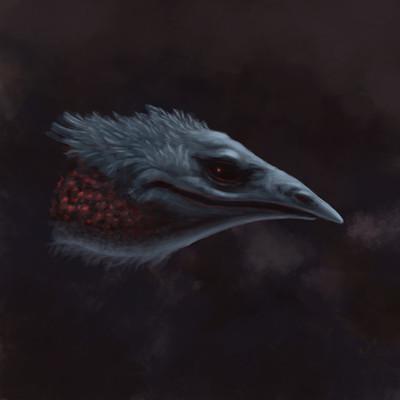 Martin malek bird blue