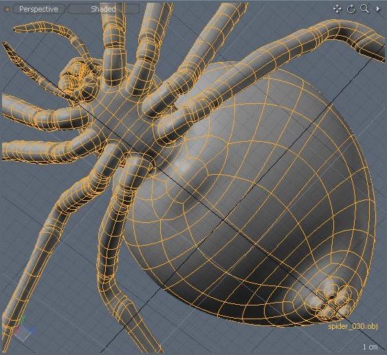 Zoltan korcsok 445 tid image022