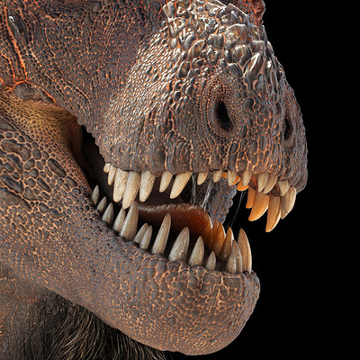 Damir g martin tyrannosaurus rex2