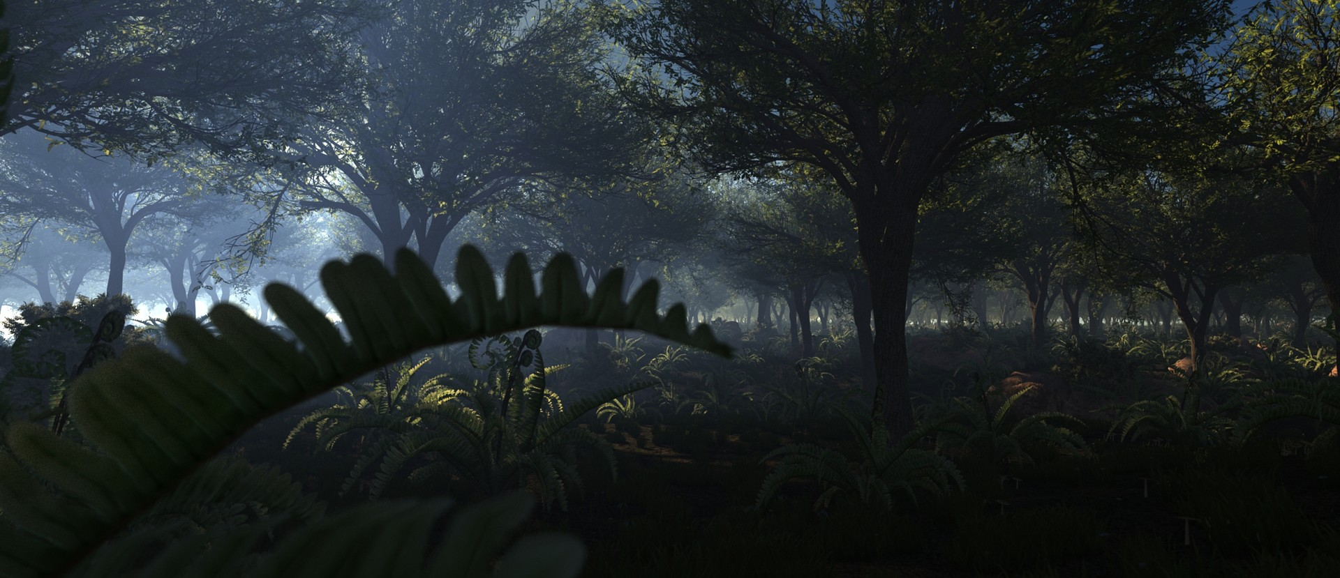 Ezra szigetti plants