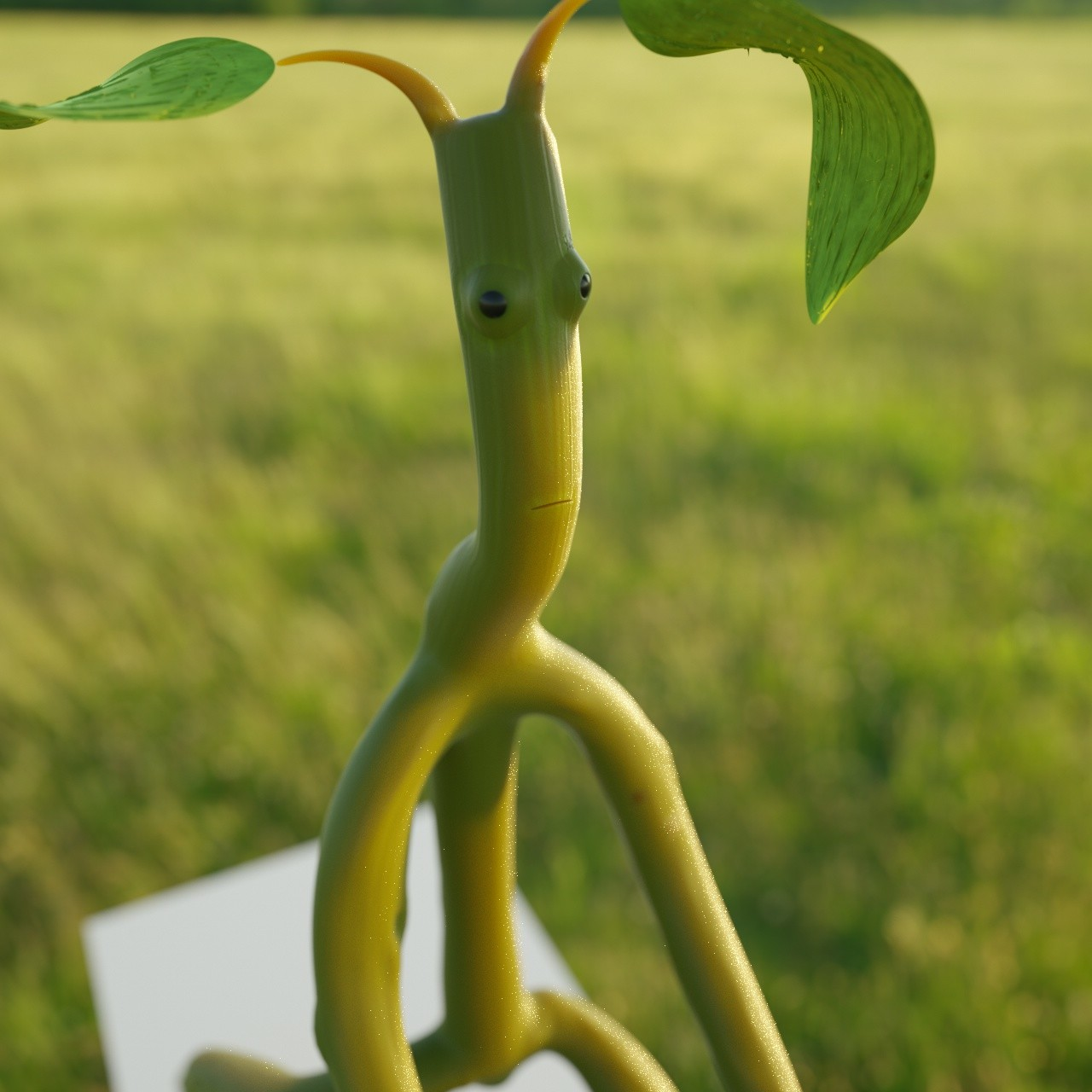 Chris kessler bowtruckle2