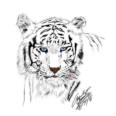 Andre smith white tiger1