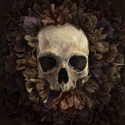 Matt demino skull v7