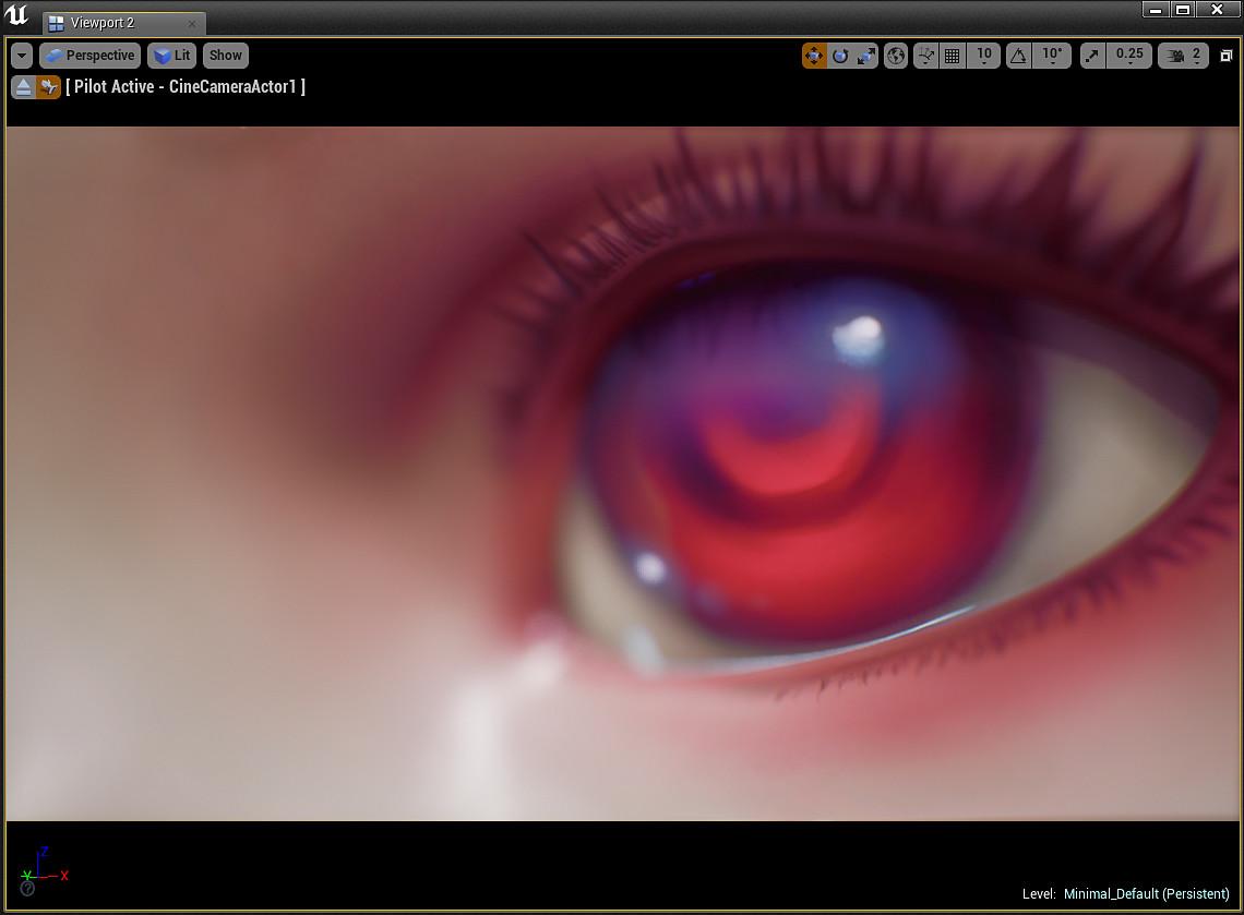 Dzung phung dinh 031 eyecloseup