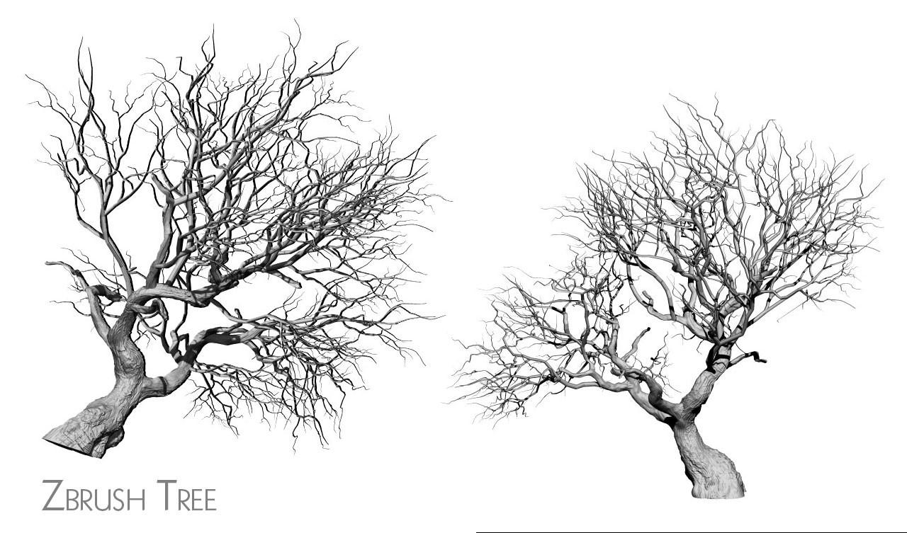 Florian thomasset treewip02