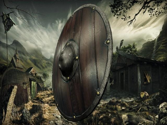 Petar doychev viking shield 2