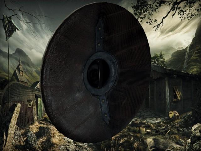 Petar doychev viking shield 3