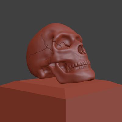 Johna aae 30 skull