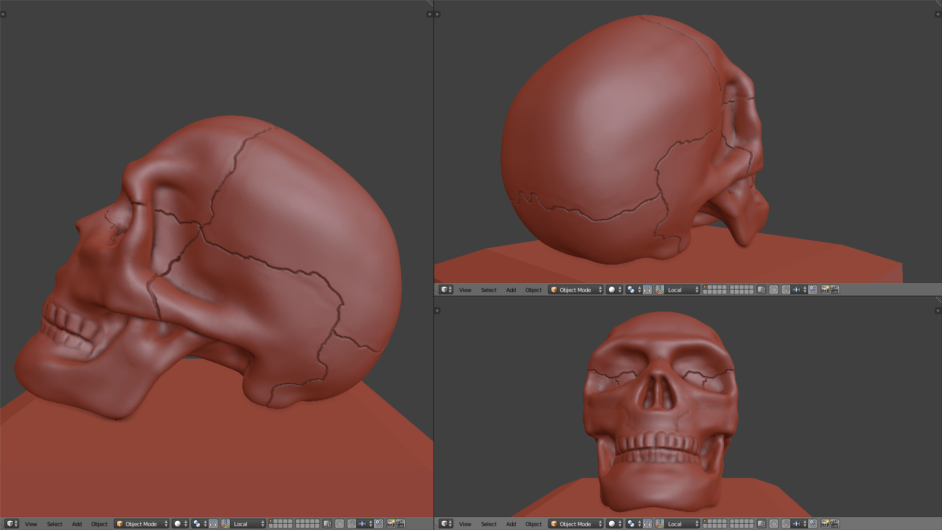Johna aae 32 skull