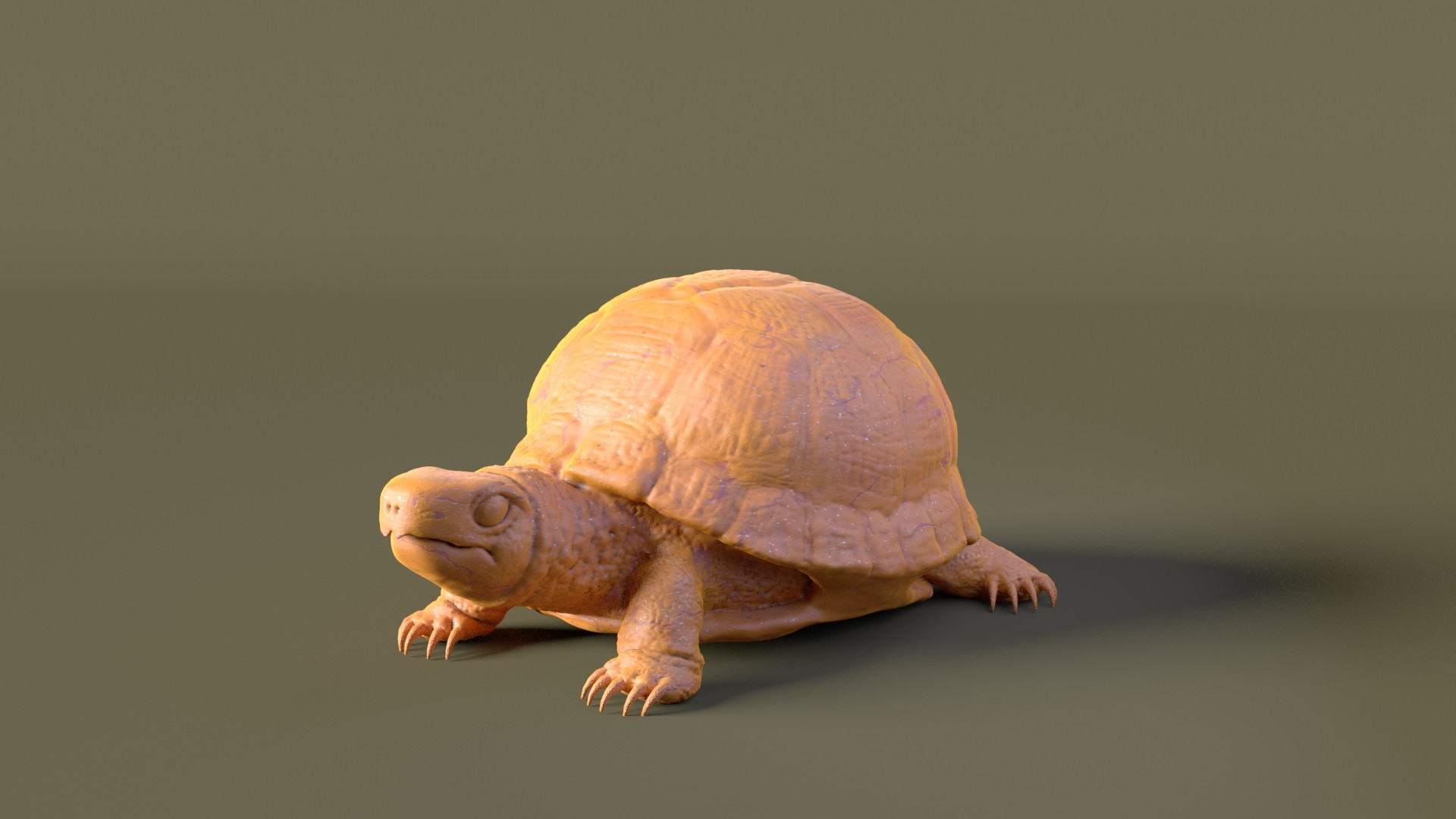 Day8.Turtle Turtle Time:1 Hour 40 Minutes