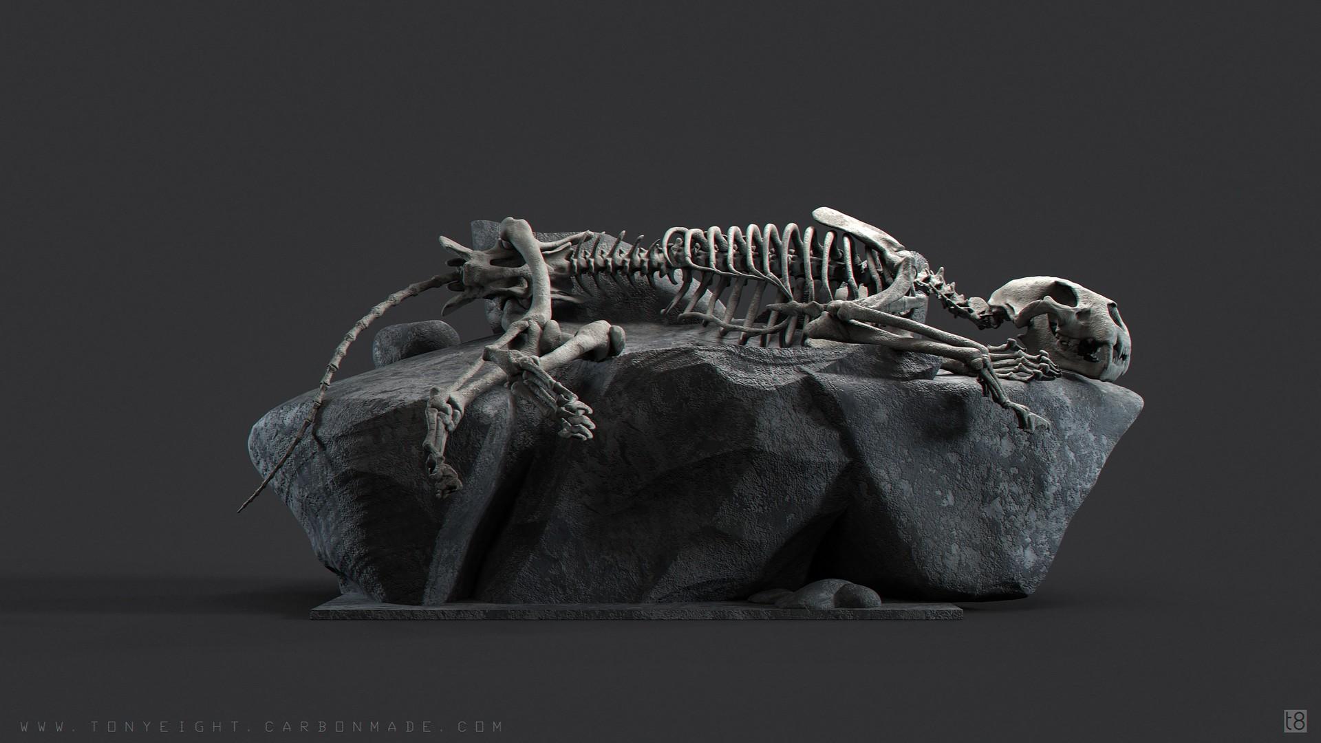 tony camehl lion skeleton 04 pose 192