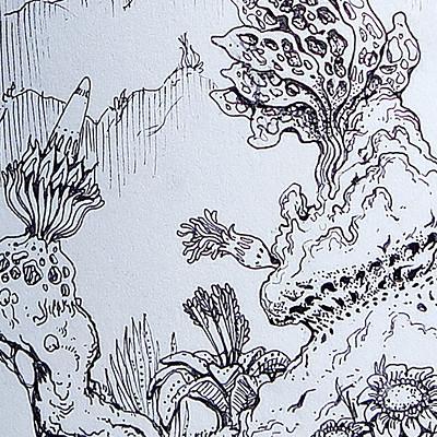 Kemane ba flora 01 web