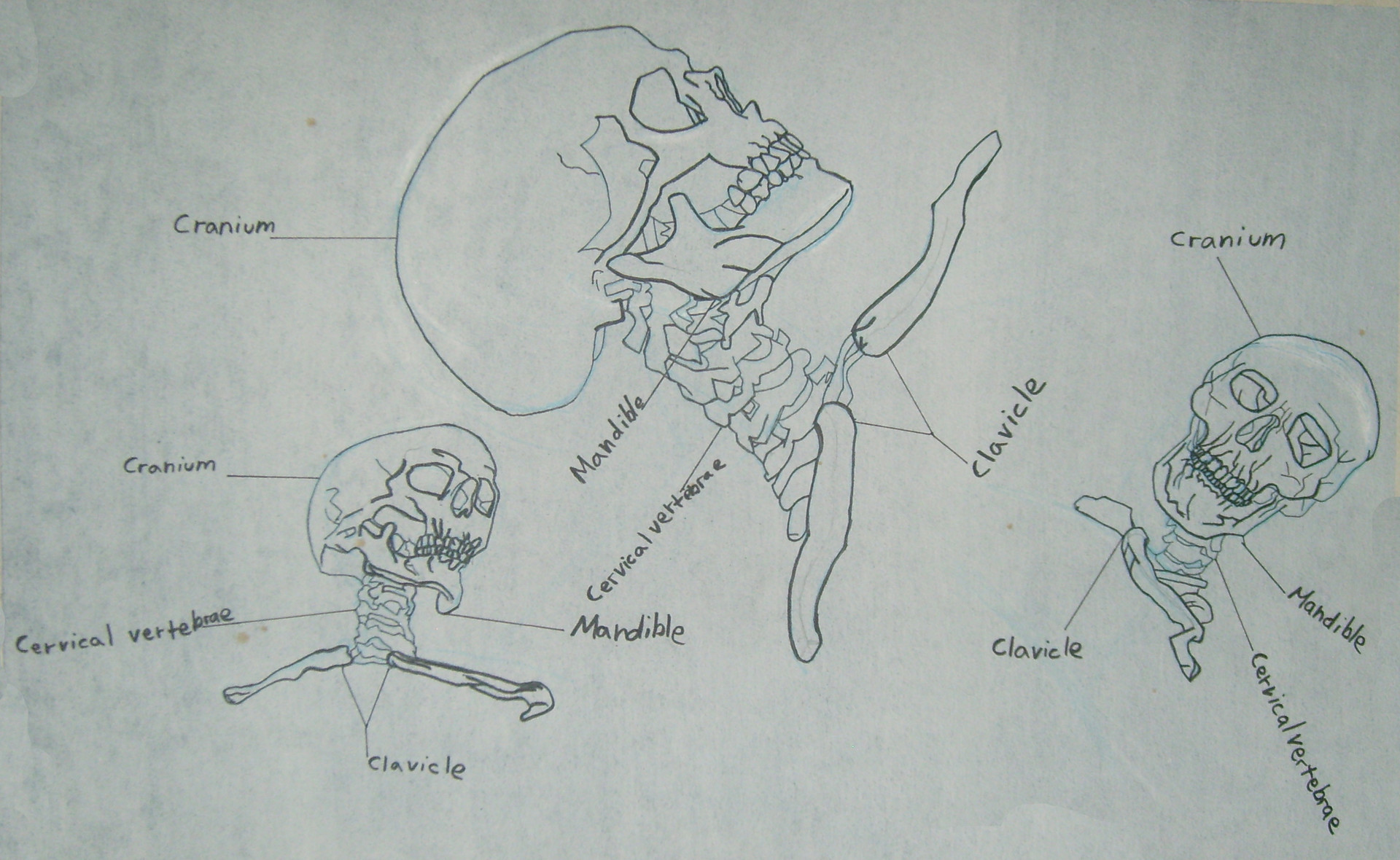Antonio medina life drawing 012