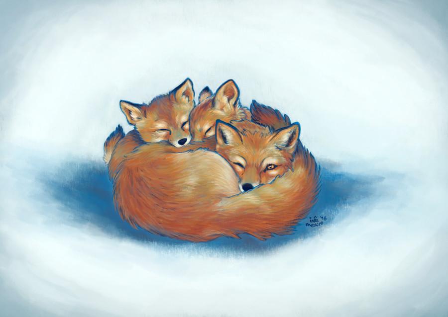 Ines merino 1611 xmas foxes finalfinal web