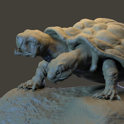 Dirk wachsmuth turtle render2 4web