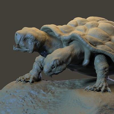 Dirk wachsmuth turtle render2 4web