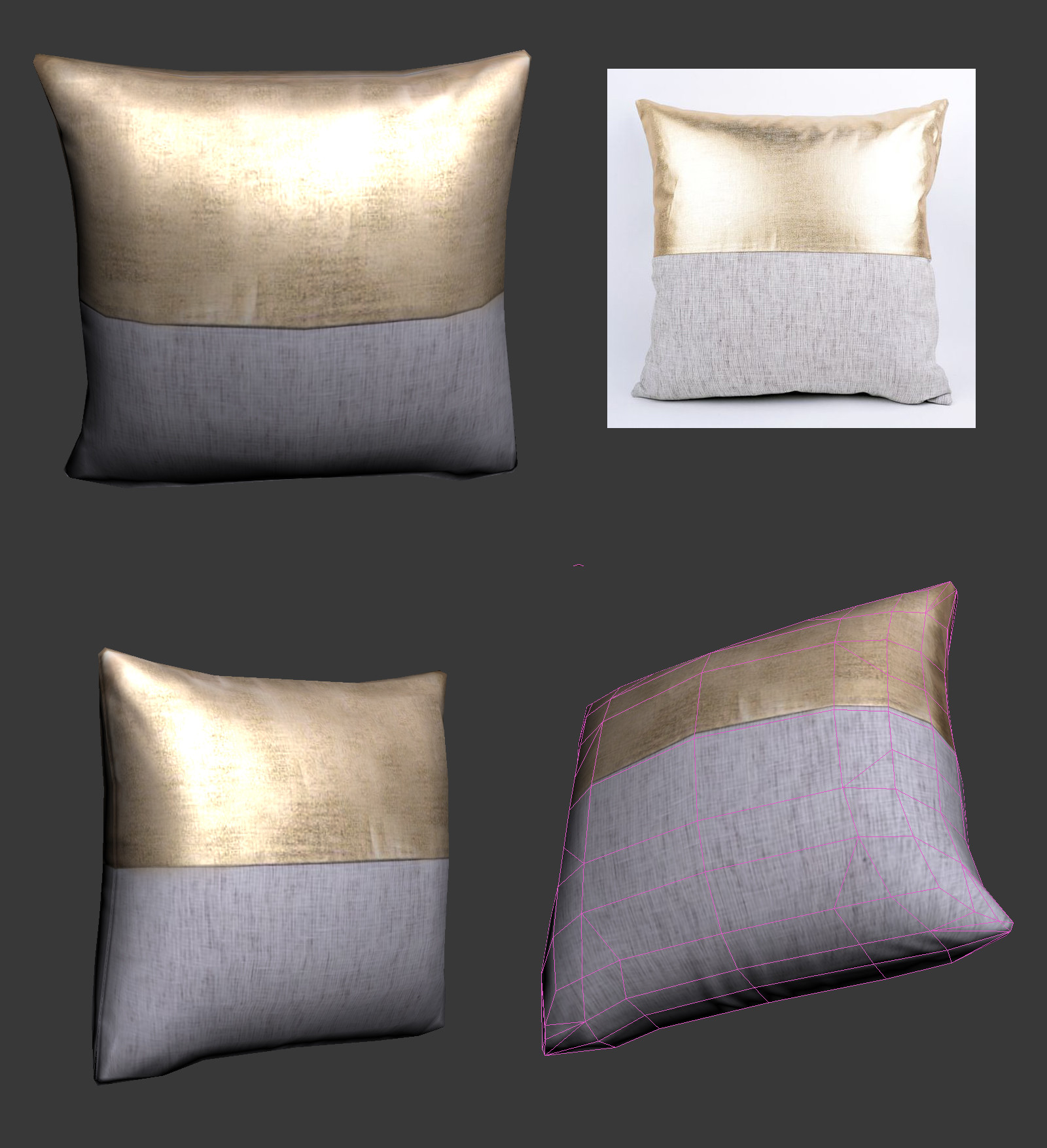 Oziel leal salinas pillow1 2