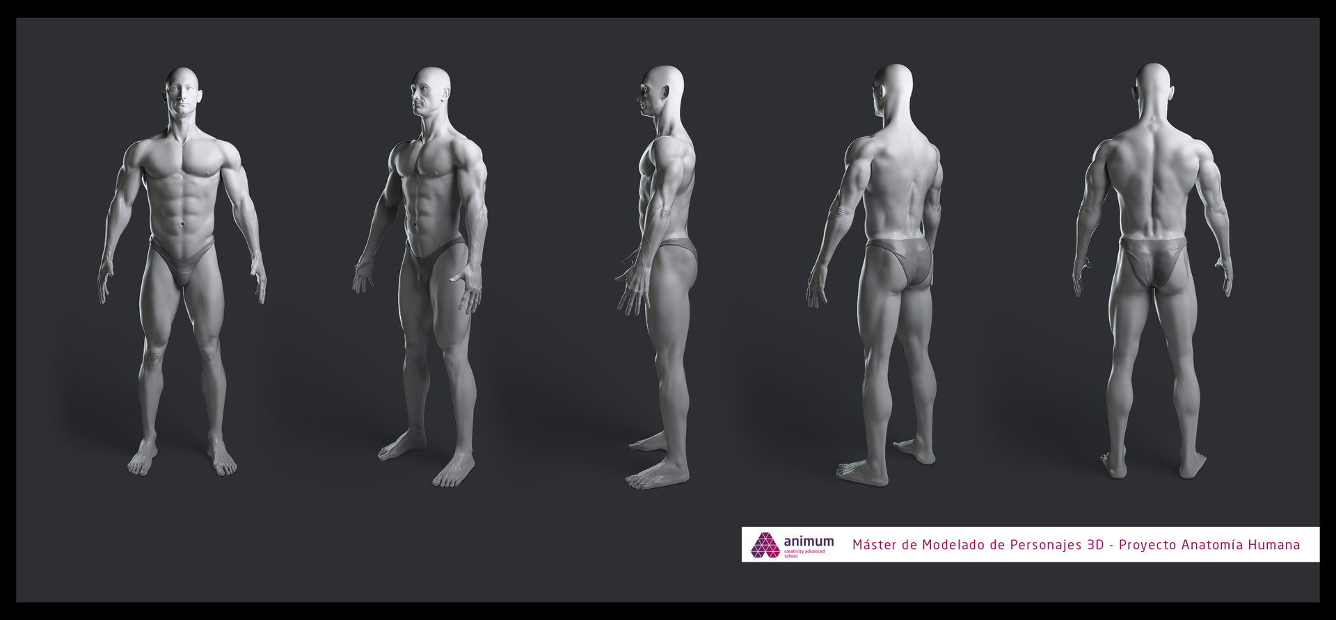 ArtStation - 3D anatomy study, Husni Qamhiyeh