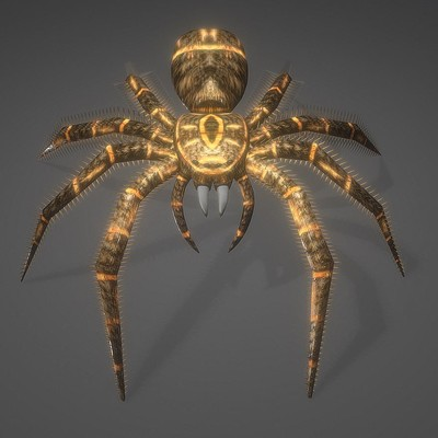 Dennis haupt 3d model animals insect spider game ready low poly rigged 10