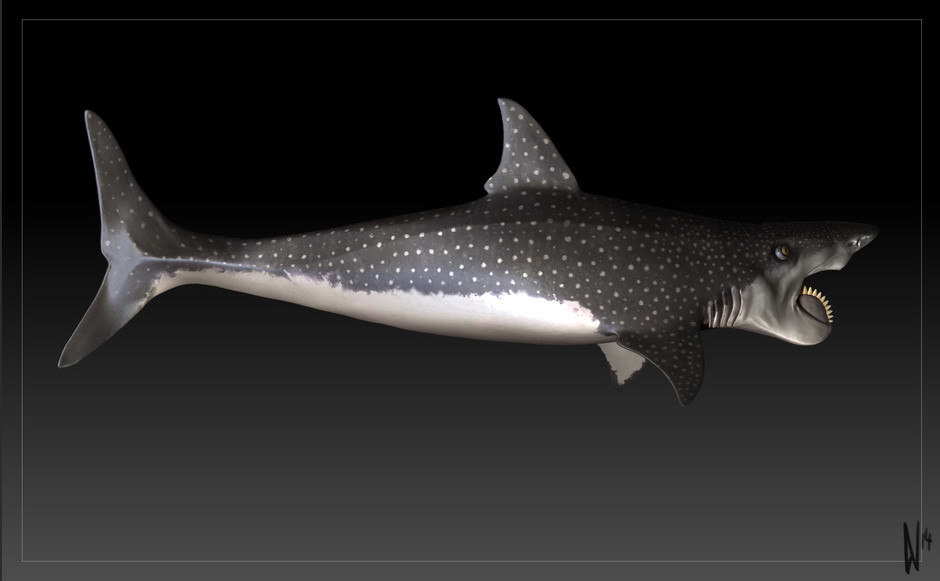 Dirk wachsmuth helicoprion zbrush screen 05