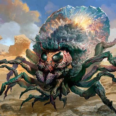 Svetlin velinov giant solifuge