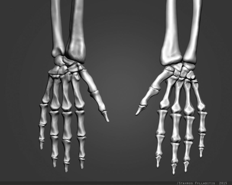 Stavros fylladitis hand 01