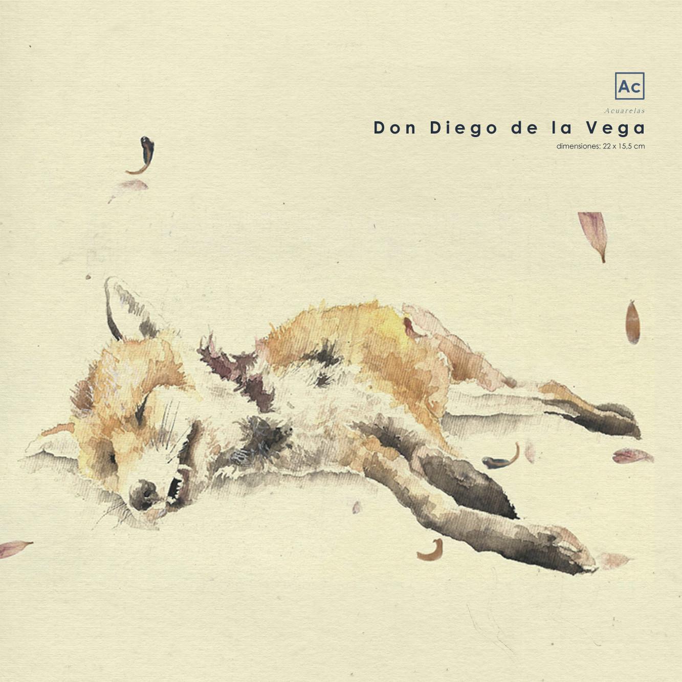 Don Diego de la Vega