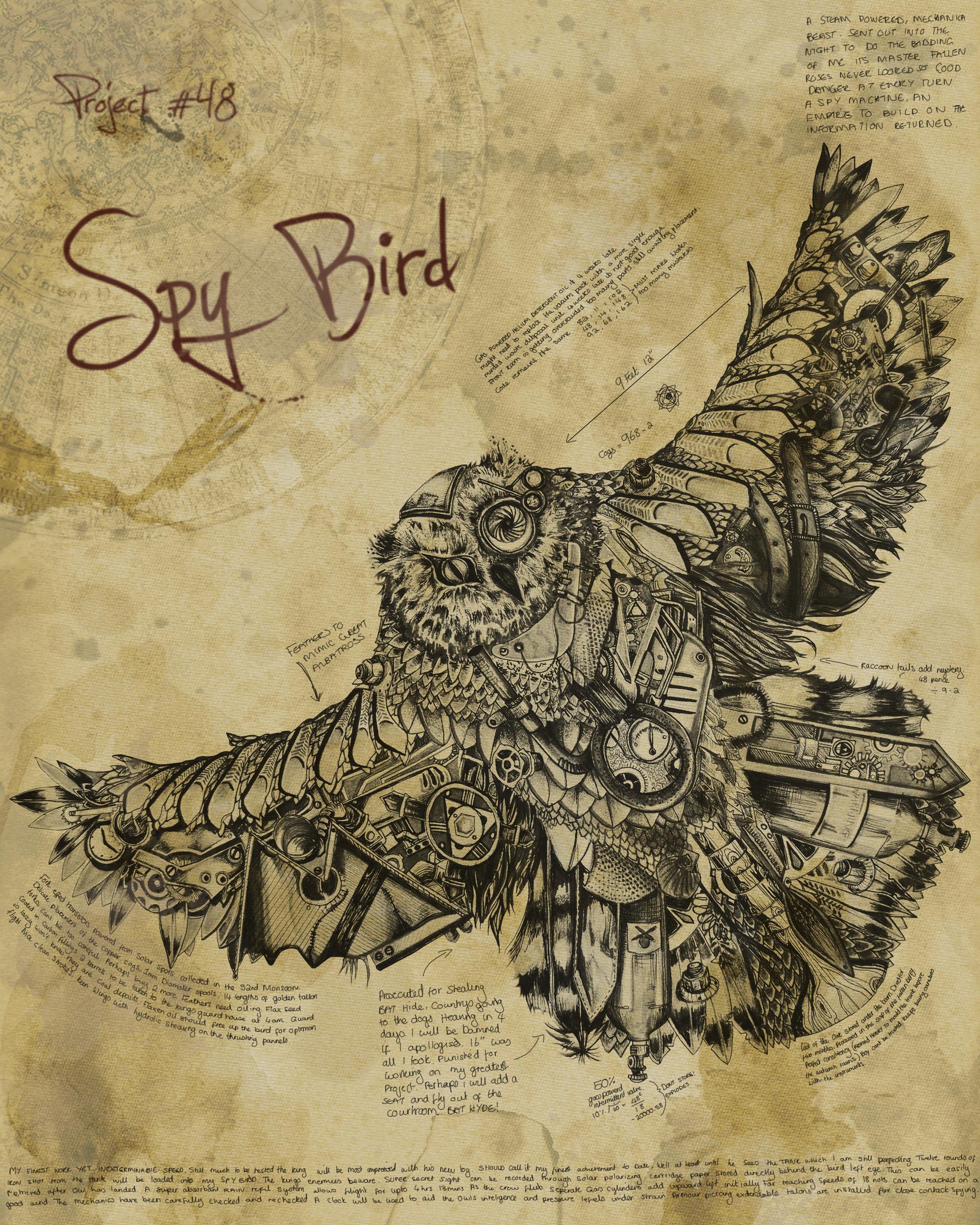Spy Bird
