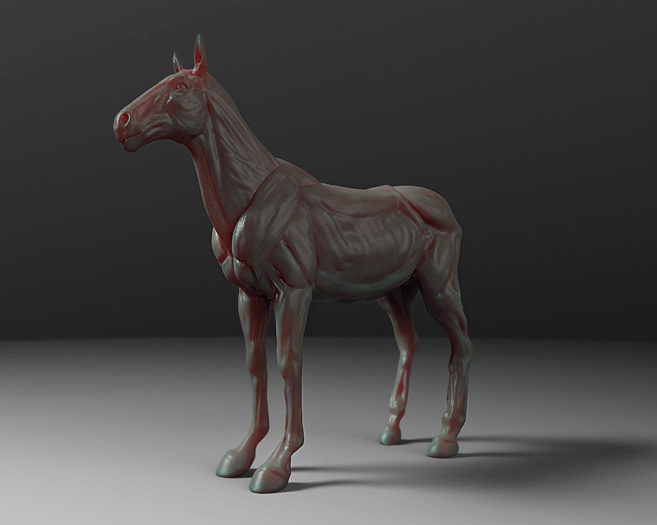Ty Ferrell Horse Anatomy Study