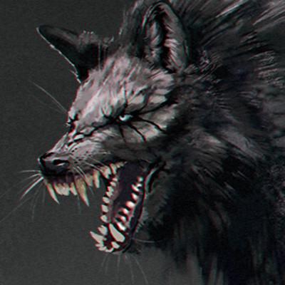 Ankou schnee ankoiwolf