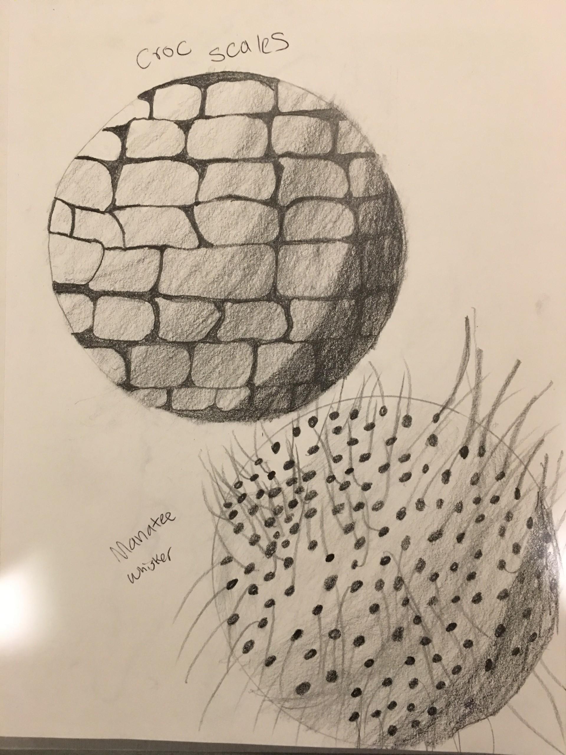 Chris hendrickson hendrickson chris 3d art2 o 1612