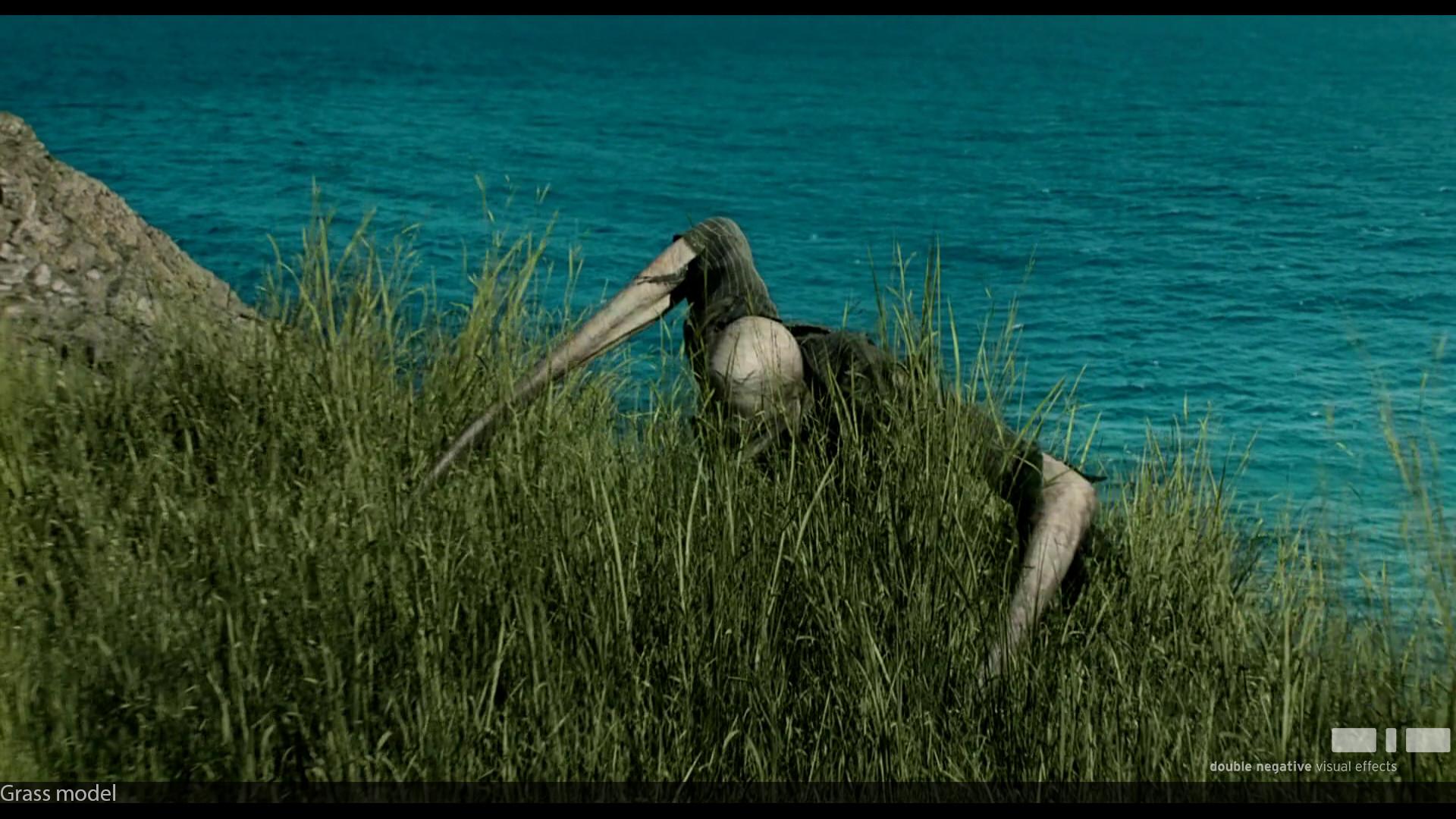 Stavros fylladitis grass 001