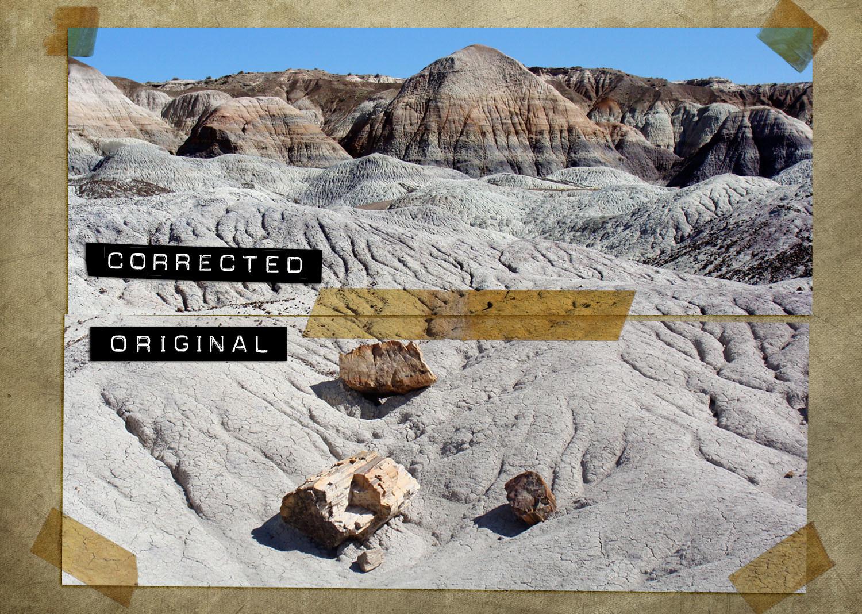 Steve rampton painted desert album