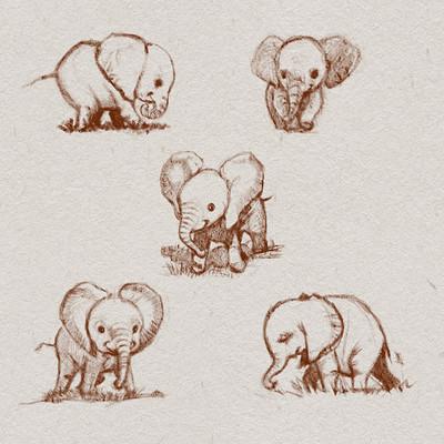 Okan bulbul elephants02