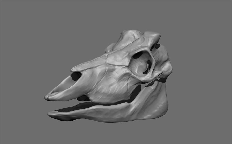 Gael kerchenbaum antelope presentation 003