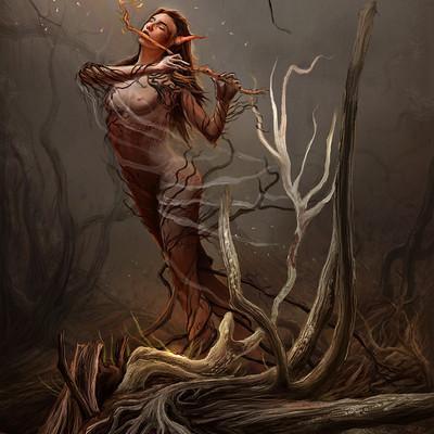 Filipe ferreira forest spirit fb
