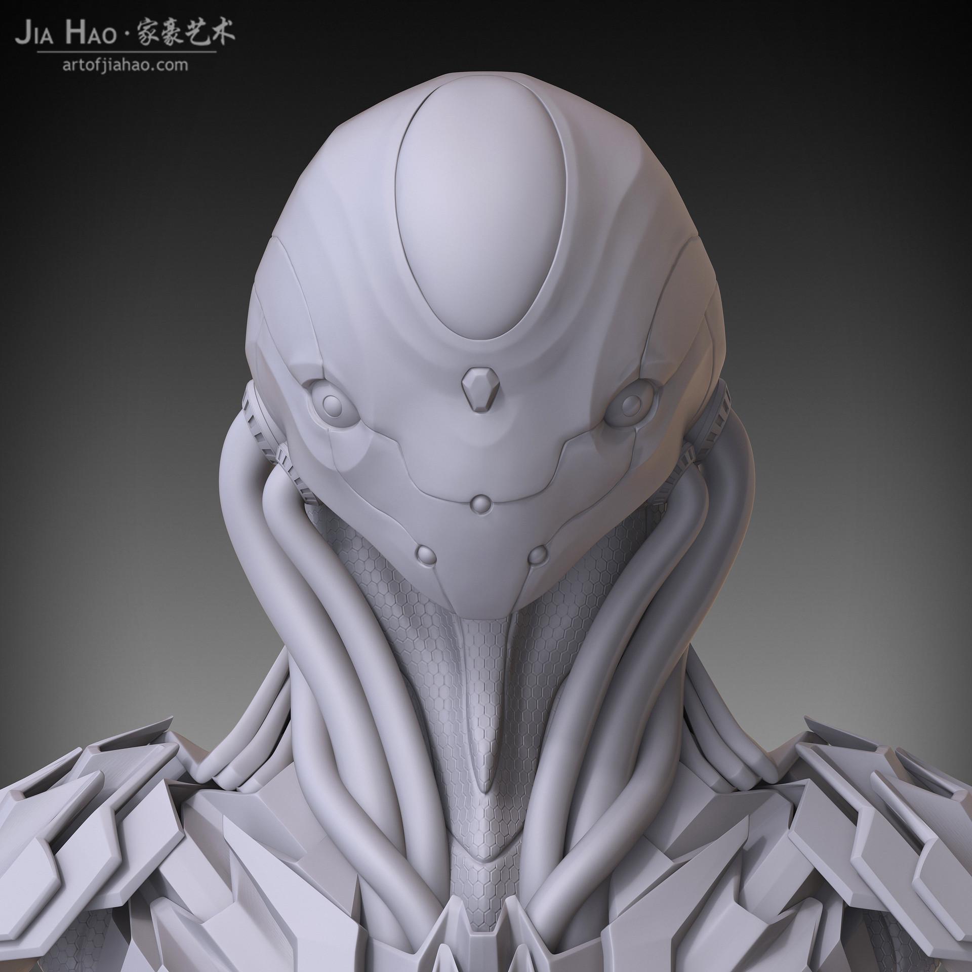 Jia hao elite 01