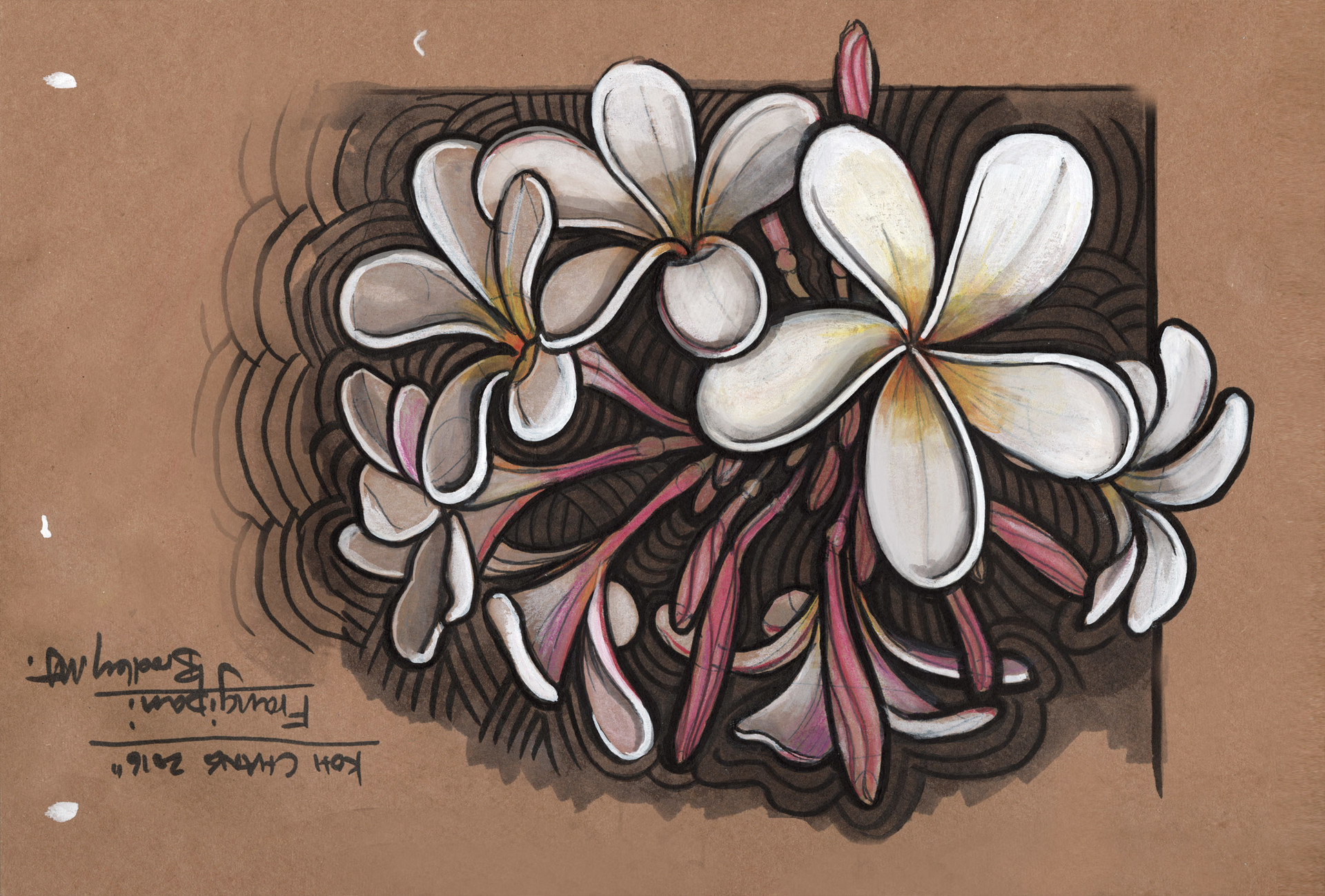 Bradley morgan johnson frangipani a3