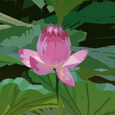 Harrison yinfaowei lotus flower