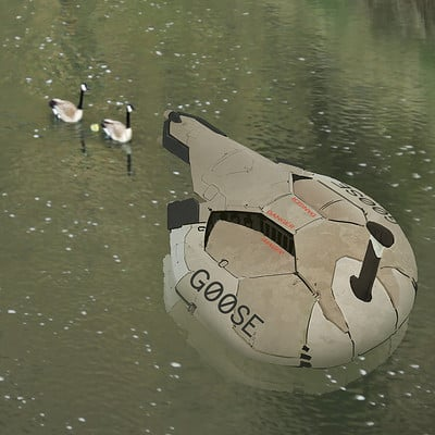 Peter gregory 17 03 07 goose